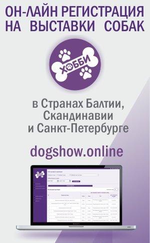 dogshow-module
